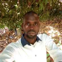 Le Chat Numéro 1 de Niger